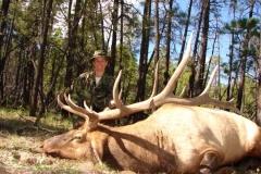 elk-hunting-04