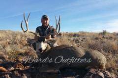mule-deer-hunting-24